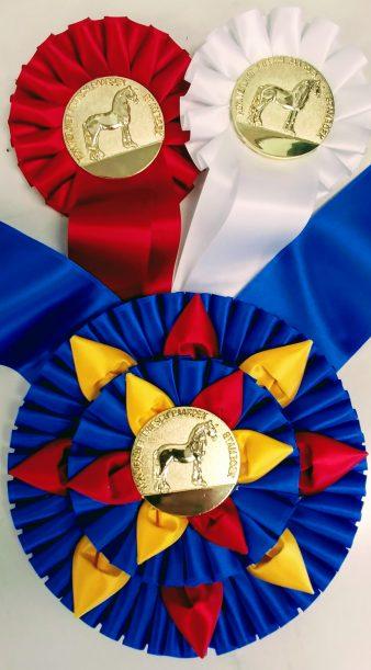 Royal Ribbon Coins and Awards