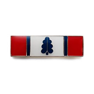 Police Service Award Bars, Law Enforcement, EMS, Firefighter Bars