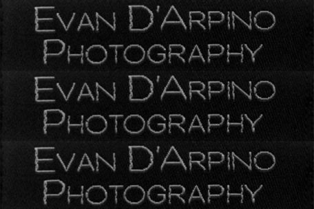 damask label evan d'arpino photography