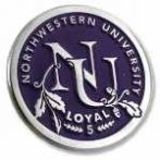 college lapel pin