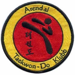 tae kwon do embroidered patch